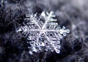 90% đều hoa mắt vì không thể tìm thấy 7 bông tuyết khác biệt, còn bạn thì sao?