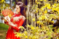 Phong tục Lễ Tết truyền thống ở Việt Nam