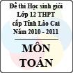 Đề thi học sinh giỏi lớp 12 THPT tỉnh Lào Cai môn Toán (năm học 2010 - 2011)