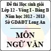 Đề thi học sinh giỏi tỉnh Long An lớp 12 vòng 1 năm 2012 - 2013 môn Ngữ Văn (Bảng B)