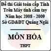 Đề thi giải toán trên Máy tính cầm tay cấp tỉnh Quảng Ngãi môn Hóa THPT (2008 - 2009)