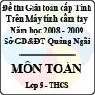Đề thi giải toán trên Máy tính cầm tay cấp tỉnh Quảng Ngãi môn Toán lớp 9 (2008 - 2009)