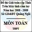 Đề thi giải toán trên Máy tính cầm tay cấp tỉnh Quảng Ngãi môn Toán THPT (2008 - 2009)