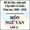 Đề thi học sinh giỏi tỉnh Cà Mau lớp 12 năm 2010 môn Ngữ văn