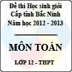 Đề thi học sinh giỏi tỉnh Bắc Ninh năm 2012 - 2013 môn Toán lớp 12 (Có đáp án)