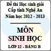 Đề thi học sinh giỏi tỉnh Nghệ An năm 2012 - 2013 môn Sinh học lớp 12 Bảng B (Có đáp án)