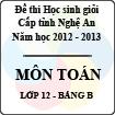 Đề thi học sinh giỏi tỉnh Nghệ An năm 2012 - 2013 môn Toán lớp 12 Bảng B (Có đáp án)