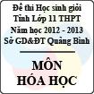 Đề thi học sinh giỏi lớp 11 THPT tỉnh Quảng Bình năm học 2012 - 2013 môn Hóa học - Có đáp án