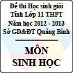 Đề thi học sinh giỏi lớp 11 THPT tỉnh Quảng Bình năm học 2012 - 2013 môn Sinh học - Có đáp án
