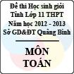 Đề thi học sinh giỏi lớp 11 THPT tỉnh Quảng Bình năm học 2012 - 2013 môn Toán - Có đáp án