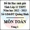 Đề thi học sinh giỏi lớp 12 THPT tỉnh Quảng Bình năm học 2012 - 2013 môn Toán - Vòng 1 (Có đáp án)