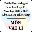 Đề thi học sinh giỏi Văn hóa lớp 12 tỉnh Bắc Giang năm học 2012 - 2013 môn Vật lý - Có đáp án