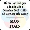 Đề thi học sinh giỏi Văn hóa lớp 8 tỉnh Bắc Giang năm học 2012 - 2013 môn Toán - Có đáp án