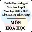 Đề thi học sinh giỏi Văn hóa lớp 9 tỉnh Bắc Giang năm học 2012 - 2013 môn Hóa học - Có đáp án