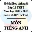 Đề thi học sinh giỏi lớp 11 THPT tỉnh Hà Tĩnh năm học 2012 - 2013 môn Tiếng Anh - Có đáp án
