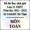 Đề thi học sinh giỏi lớp 11 THPT tỉnh Hà Tĩnh năm học 2012 - 2013 môn Toán - Có đáp án