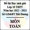 Đề thi học sinh giỏi lớp 10 THPT tỉnh Hải Dương năm học 2012 - 2013 môn Toán - Có đáp án