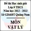Đề thi học sinh giỏi lớp 9 THCS tỉnh Quảng Nam môn Vật lý