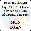 Đề thi học sinh giỏi lớp 12 THPT chuyên tỉnh Vĩnh Phúc năm 2013 môn Toán - Có đáp án