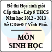 Đề thi học sinh giỏi lớp 9 THCS tỉnh Vĩnh Phúc năm 2013 môn Sinh học - Có đáp án