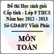 Đề thi học sinh giỏi lớp 9 THCS tỉnh Vĩnh Phúc năm 2013 môn Toán - Có đáp án