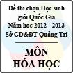 Đề thi chọn đội tuyển Học sinh giỏi Quốc Gia tỉnh Quảng Trị năm 2012 - 2013 môn Hóa học