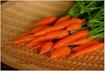 Bí quyết trồng cà rốt tí hon