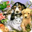 Giáo án Tự nhiên và Xã hội bài Động vật