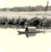 Giáo án Ngữ văn 11 bài Câu cá mùa thu