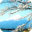 Giáo án điện tử bài Nhật Bản