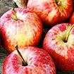 Tác dụng của táo đối với sức khỏe trẻ em