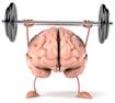 Thảo dược giúp tăng cường trí nhớ