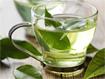 Vì sao bà bầu không nên uống trà xanh?
