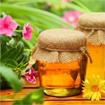 Những vị thuốc từ ong mật