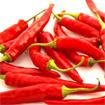 Bài thuốc giảm đau từ trái ớt