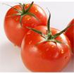 Công dụng chữa bệnh hiệu quả từ cà chua