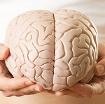 Ung thư não - nguyên nhân, triệu chứng và cách điều trị