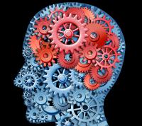 """""""Cân đo"""" khả năng phản ứng nhanh của não bộ với những câu đố vui"""