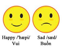 Trắc nghiệm Tiếng Việt lớp 5 - Nhận biết từ trái nghĩa và từ đồng nghĩa