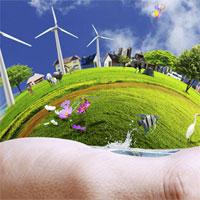 Giáo án Sinh học 9 bài Môi trường và các nhân tố sinh thái