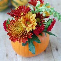 Cắm hoa bí ngô siêu dễ thương cho Halloween