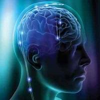 Não bạn có nhiều nếp nhăn không?