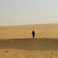 Phân tích tác phẩm Bài thơ ngắn đi trên bãi cát của Cao Bá Quát