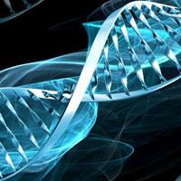 Bài tập sinh học lớp 10: ADN, ARN và protêin