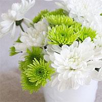 3 cách cắm hoa siêu đẹp cho ngày 8-3