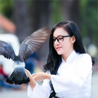 Đề thi học sinh giỏi vòng 2 môn Ngữ văn lớp 9 phòng GD&ĐT Tam Dương năm 2015 - 2016