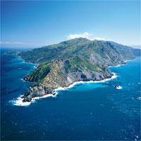 Giáo án Địa lý 9 bài 39: Phát triển tổng hợp kinh tế và bảo vệ môi trường biển đảo (tt)