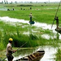 Giáo án Địa lý 12 bài 41: Vấn đề sử dụng hợp lý và cải tạo tự nhiên ở Đồng bằng sông Cửu Long