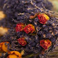 Cách làm hoa khô từ hoa tươi đẹp nhất