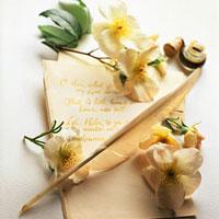 Trắc nghiệm vui: Bạn sẽ cất lá thư ở đâu?